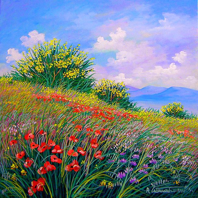 Ginestre dipinti vendita dipinti quadri a olio for Quadri dipinti a mano paesaggi